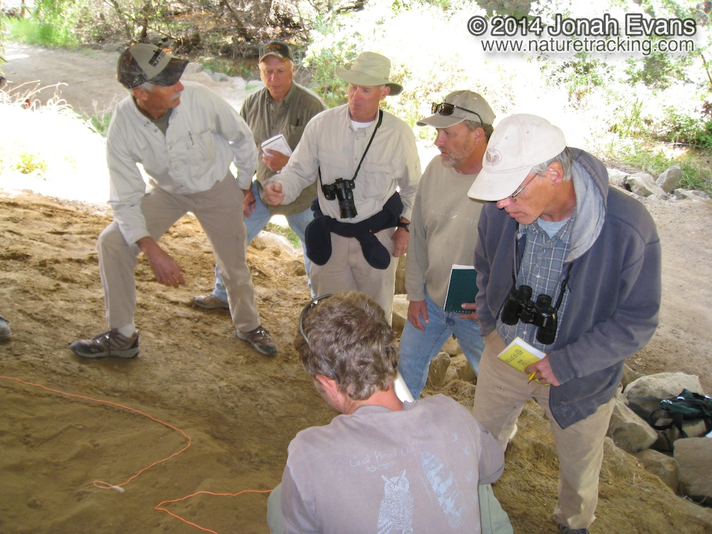San Diego Tracking Team Evaluation
