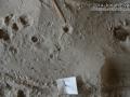 Ant Lion Trap
