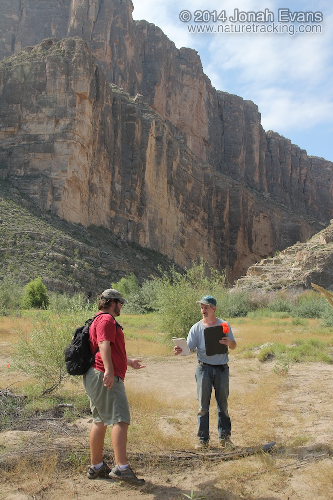 Tracking in Big Bend