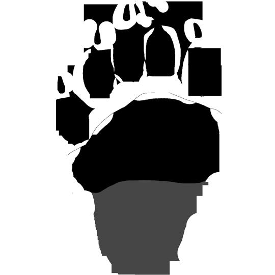 Black Bear Track (Right Hind)