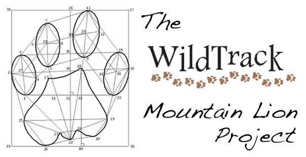 WildTrack Mountain Lion Project