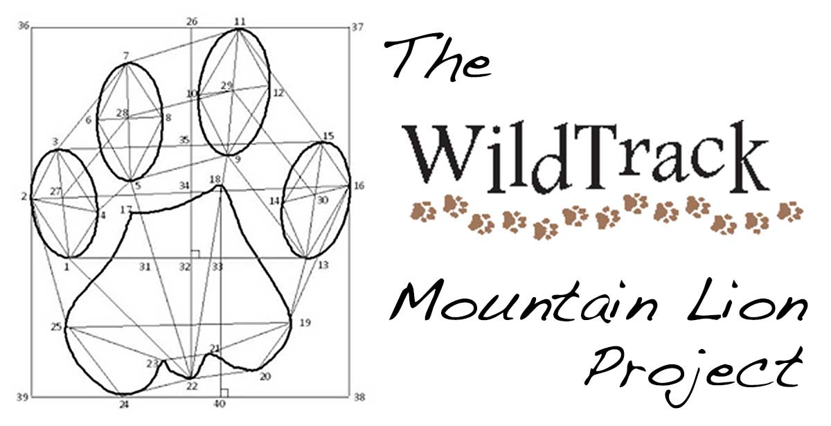 WildTrack-Measurements1