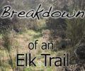 Breaking Down an Elk Trail